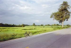 Sukhotai rizières vers parc historique 1999